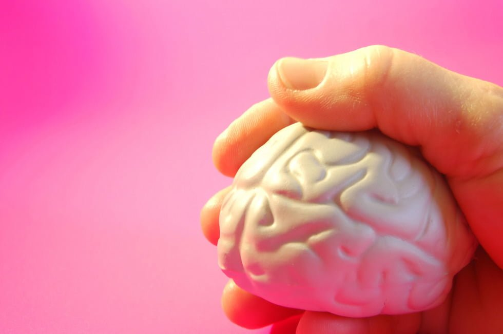 plastic brain cupped in hands